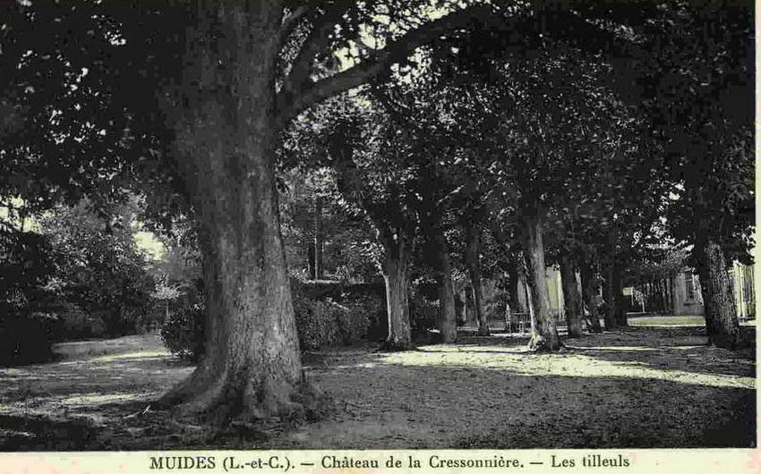 http://www.perche-gouet.net/histoire/photos/immeubles/6656/21626.jpg